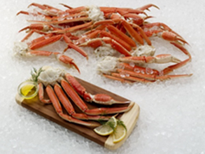 Seafood Wholesale Prices Moncton | Wholesale | Moncton Fish