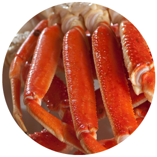Seafood Export Moncton| Wholesale | Moncton Fish Market Ltd